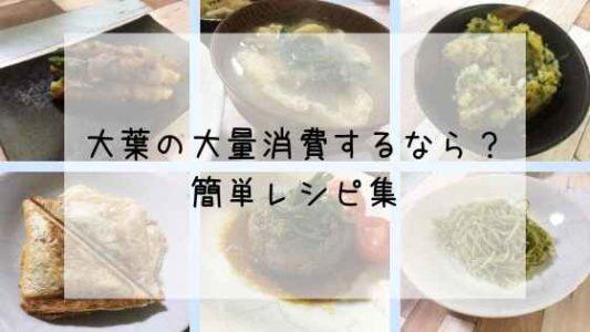 大葉の大量消費レシピ画像
