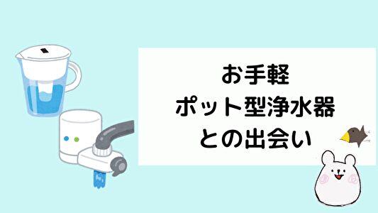 使いやすいポット型浄水器との出会い